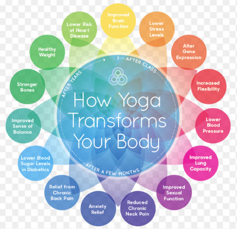 Yoga Keeps Senior Citizens Brain And Body Healthy, Fit, And